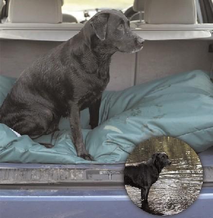 Deep Waterproof Dog Duvet